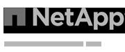 Partner-NetAp